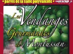 picture of LES 2emes VENDANGES GOURMANDES DE MONTUSSAN